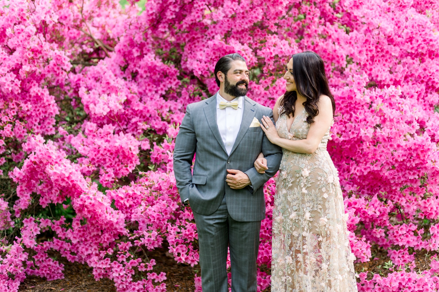 bride and groom in front of enormous pink blooming bush of azaleas inside the new york botanical garden