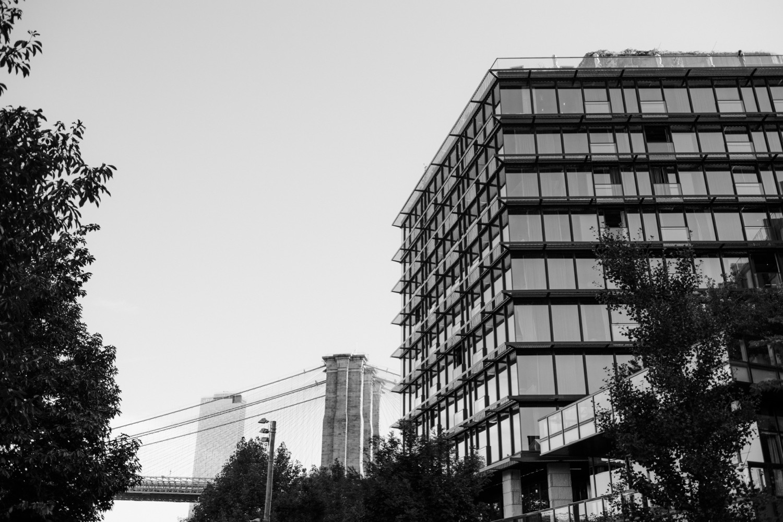 Manhattan Skyline, Brooklyn Bridge Park Couples Session, Brooklyn Bridge Park Engagement Session, Pier 1 Park Engagement Photos, 1Hotel Engagement Session, Engagement Session at 1 Hotel Brooklyn Bridge, DUMBO Engagement Session